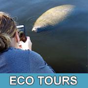 Florida eco tours