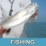 SWFL Fishing Guides Captains Tour Boats Everglades Fishing Charters