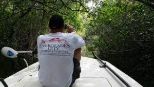 Everglades City Charter Fishing Tours